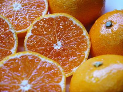 ザ・みかん 美味しく甘く育てるための匠の摘果作業 その2(十分な水を与え摘果で美味しく育てます)_a0254656_19493575.jpg