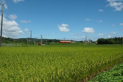小湊鉄道へ_b0017559_13491615.jpg