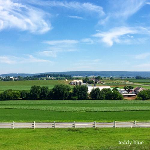 Amish farm stay  アーミッシュ ファームステイ_e0253364_14091878.jpg