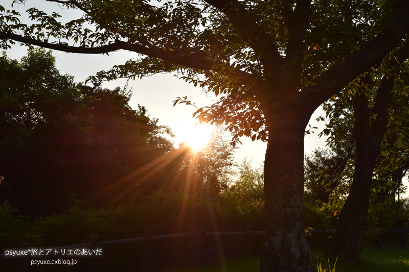 夏季休暇のお知らせ_e0131432_17433373.jpg