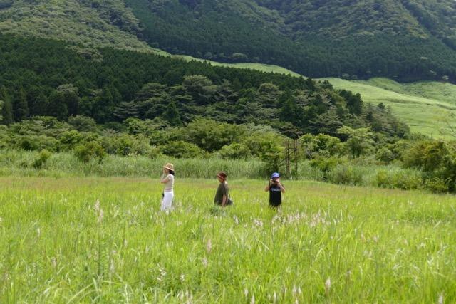 箱根湿性花園 by Meg_c0008664_23143348.jpg