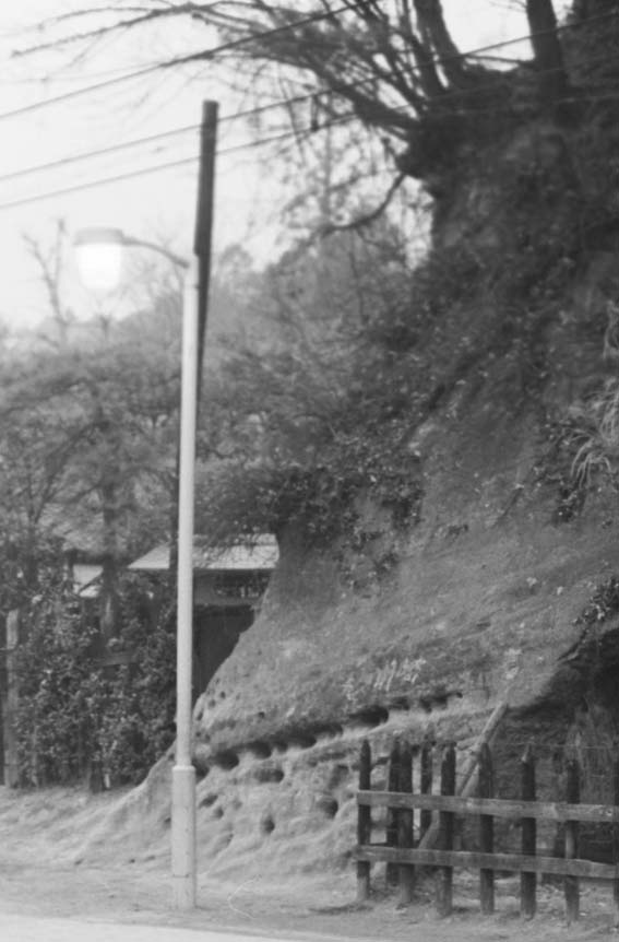 一報!緑の洞門の円覚寺側岩盤剥落:8・11_c0014967_254315.jpg