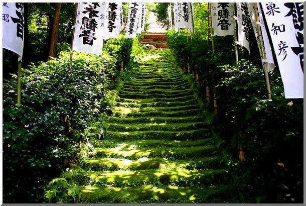 鎌倉界隈_d0123528_16553061.jpg