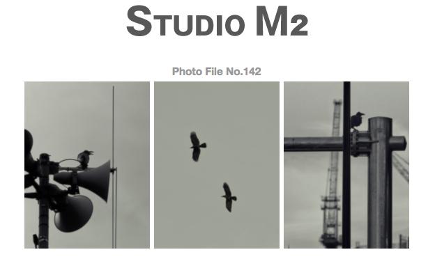 STUDIO M2 Photo File No.142 「TOKYOカラス ~ 白金台 夕鴉」_a0002672_1258851.jpg