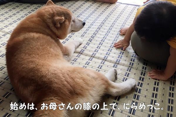 b0149072_20125112.jpg