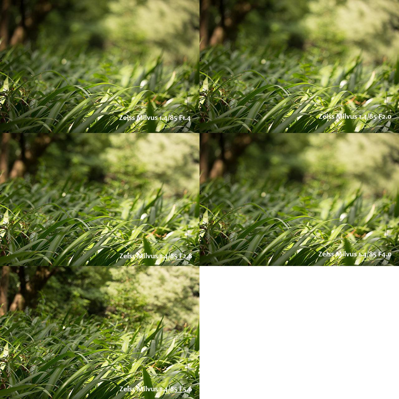 f0334396_00200713.jpg