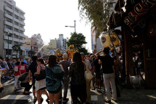 富岡八幡が熱い_b0310424_20075656.jpg