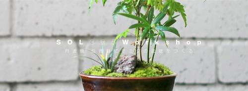 藤原三和子さんの吹きガラス_e0295731_1741666.jpg