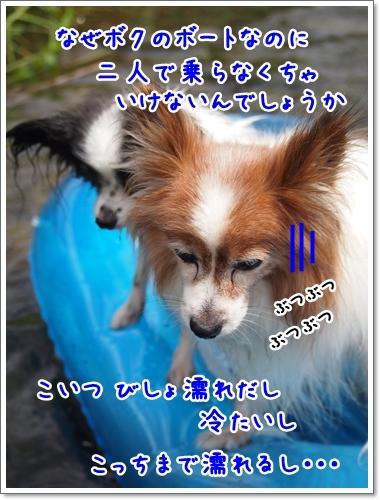 d0013149_00233296.jpg