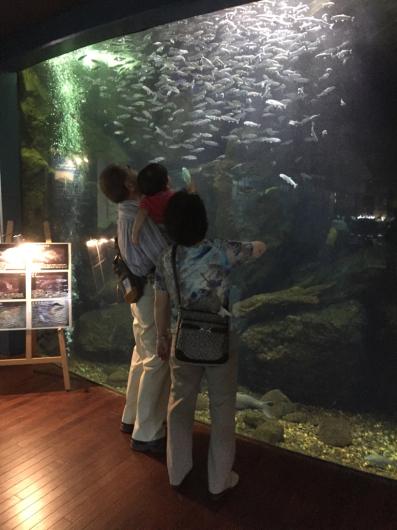 またまた忍野の水族館。_b0135325_14462899.jpg