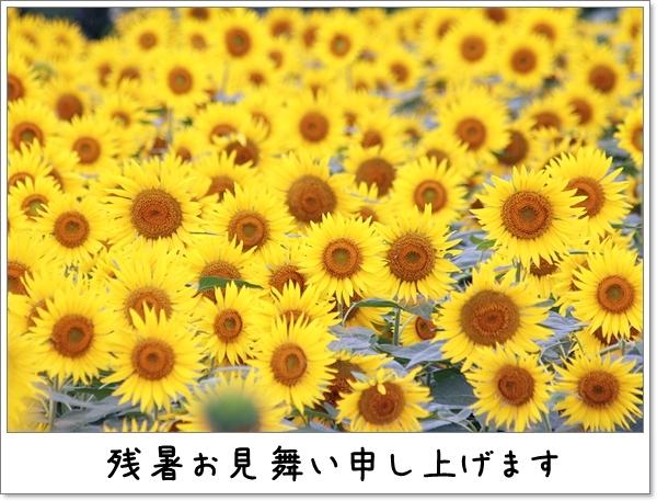 d0013149_01034295.jpg