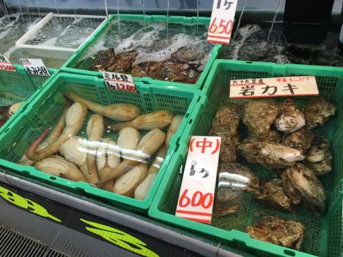 千葉の海&魚市場_c0151965_11532402.jpg