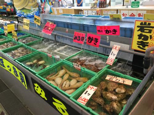 千葉の海&魚市場_c0151965_11532439.jpg