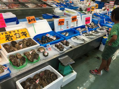 千葉の海&魚市場_c0151965_11532594.jpg