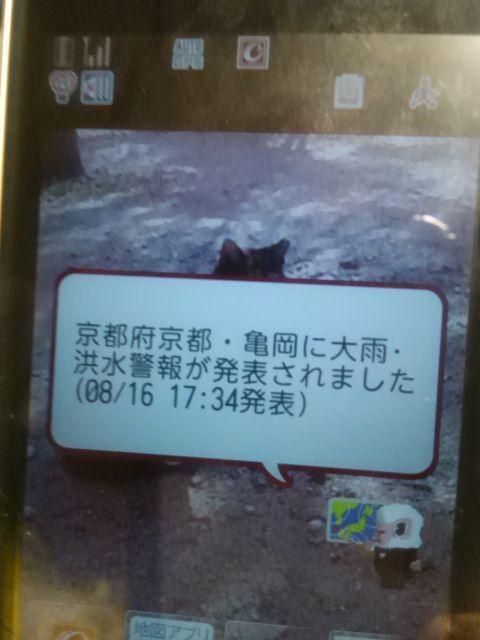 f0359751_20231743.jpg