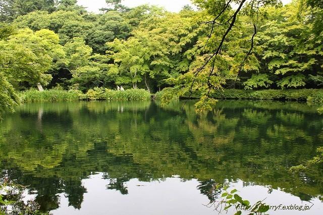 軽井沢 散策_c0087094_17125929.jpg