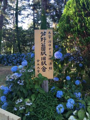 津軽でお盆休み♪赤い駅舎のカフェ_b0107003_15553136.jpg