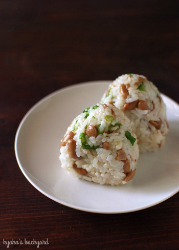 手羽と大豆の中華煮込み。今週の常備菜。_b0253205_04102512.jpg