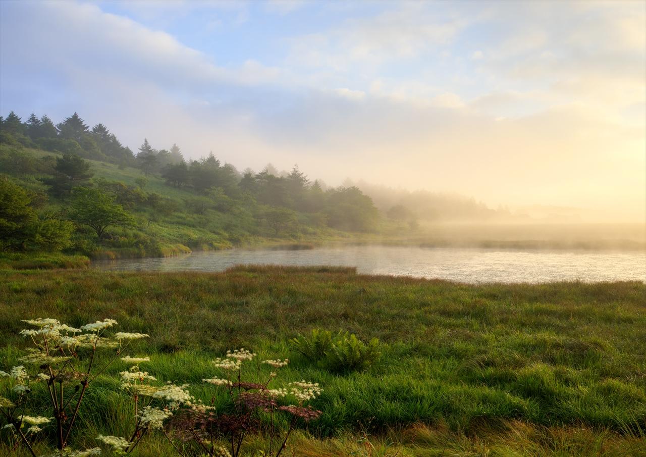 八島湿原 2_f0018464_21355274.jpg