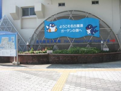 ガーデンふ頭総合案内所前花壇の植替えH28.8.17_d0338682_08585883.jpg