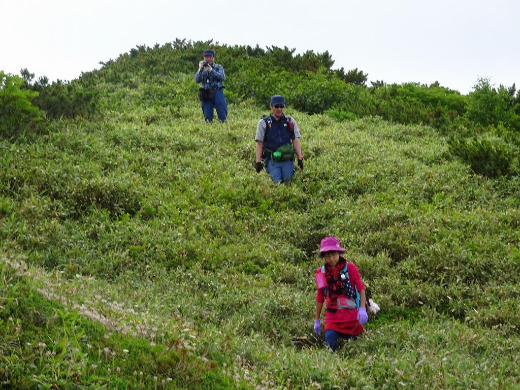 平山からニセイカウシュッペ山ピストン、8月11日-同行者からの写真-_f0138096_22102572.jpg