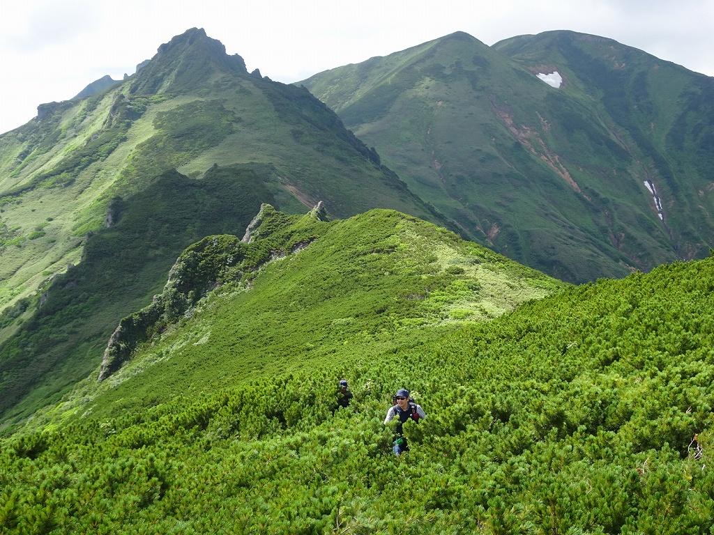 平山からニセイカウシュッペ山ピストン、8月11日-同行者からの写真-_f0138096_22103367.jpg