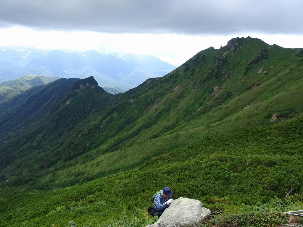 平山からニセイカウシュッペ山ピストン、8月11日-同行者からの写真-_f0138096_2210351.jpg