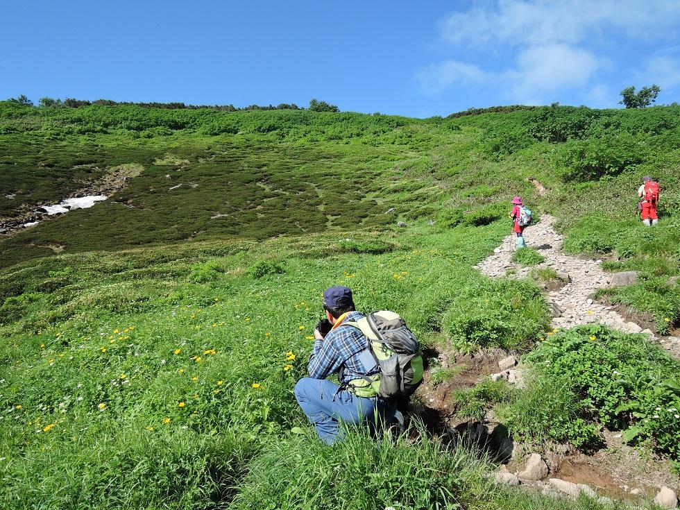 平山からニセイカウシュッペ山ピストン、8月11日-同行者からの写真-_f0138096_2272585.jpg