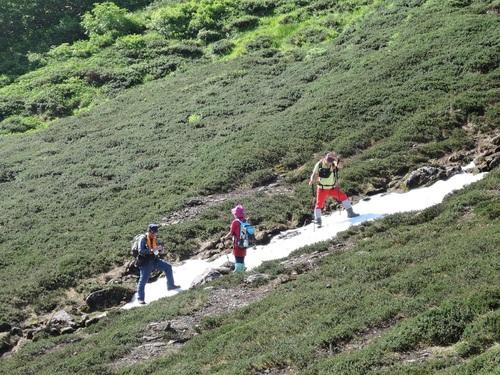 平山からニセイカウシュッペ山ピストン、8月11日-同行者からの写真-_f0138096_2273381.jpg