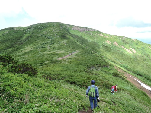 平山からニセイカウシュッペ山ピストン、8月11日-同行者からの写真-_f0138096_2275537.jpg