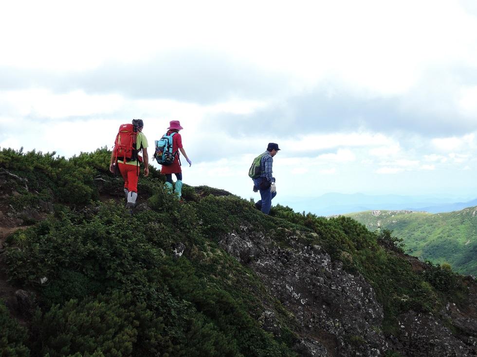 平山からニセイカウシュッペ山ピストン、8月11日-同行者からの写真-_f0138096_228835.jpg