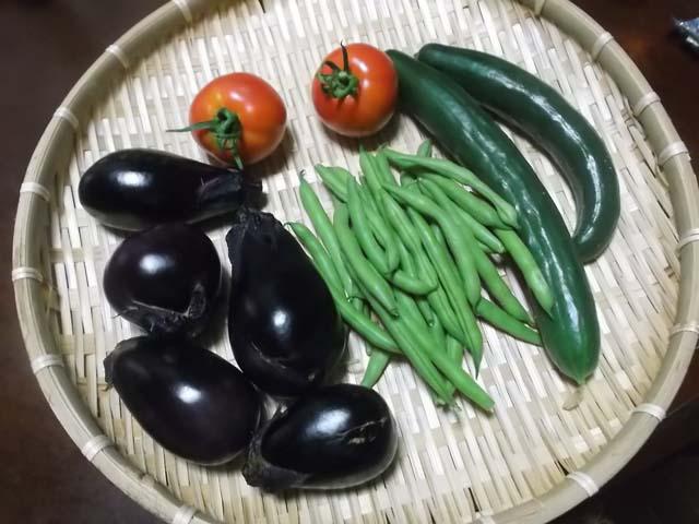 嫁農園の野菜&なすとトマトのチーズ焼き_f0019498_21354276.jpg