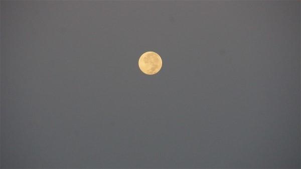 月_e0166355_06162000.jpg