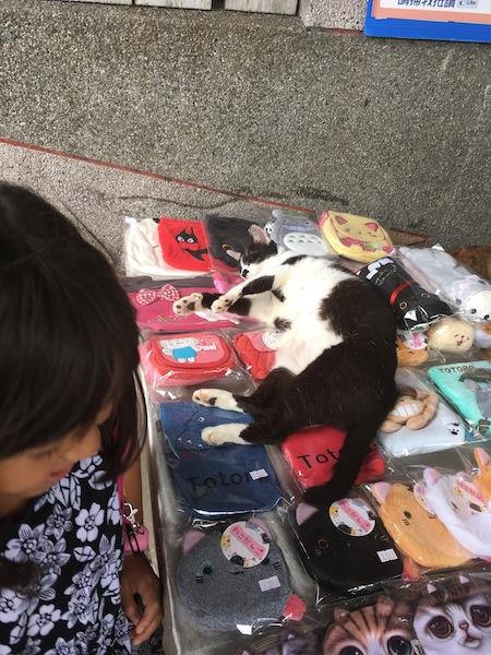 台湾旅行 二日目午前 猫村_d0075863_1248583.jpg
