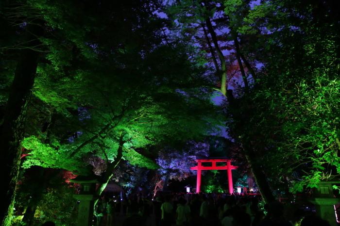 下鴨神社 糺の森の光の祭_f0021869_07410522.jpg