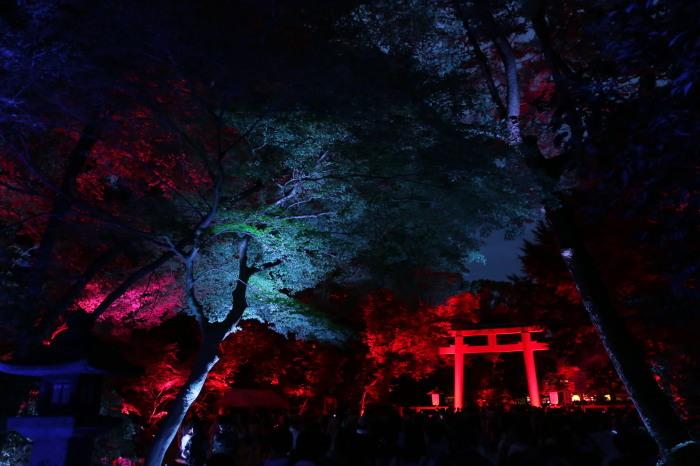 下鴨神社 糺の森の光の祭_f0021869_07420630.jpg