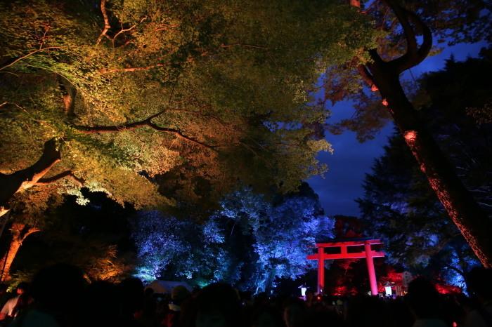 下鴨神社 糺の森の光の祭_f0021869_07425737.jpg