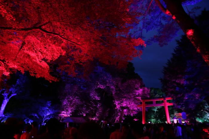 下鴨神社 糺の森の光の祭_f0021869_23455681.jpg