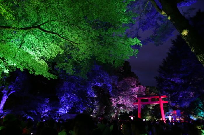 下鴨神社 糺の森の光の祭_f0021869_23463555.jpg