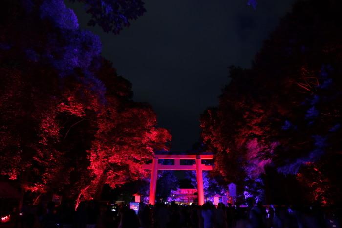 下鴨神社 糺の森の光の祭_f0021869_23523892.jpg