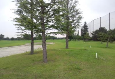 平成28年6月 ゴルフ場 管理作業 その3_d0338682_10441587.png