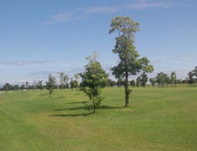 平成28年6月 ゴルフ場 管理作業 その3_d0338682_10451104.png
