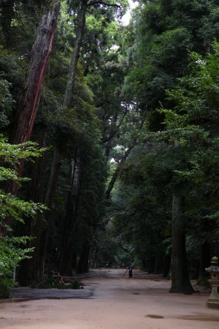 鹿島神宮さまから始まる五社参り by Meg_c0008664_19531761.jpg