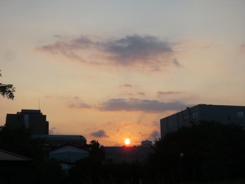 ■真夏の週替わりの夕暮れ[8/15・21]_d0190217_2244173.jpg