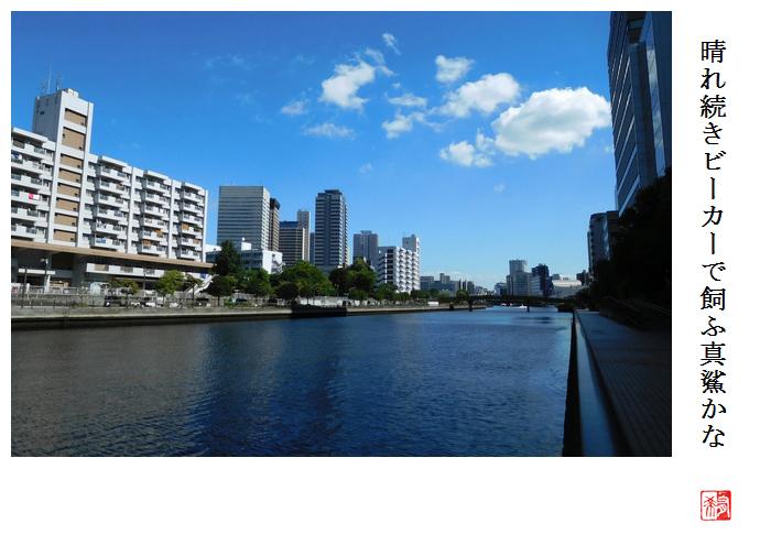 第19回俳句甲子園_a0248481_2214281.jpg