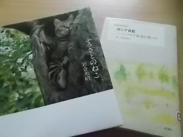 岩合さんの猫写真集と夜ご飯_f0316507_13234388.jpg