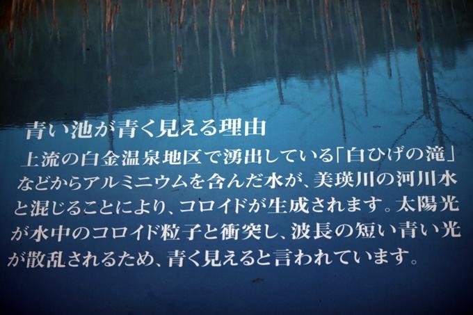 f0340021_18235126.jpg