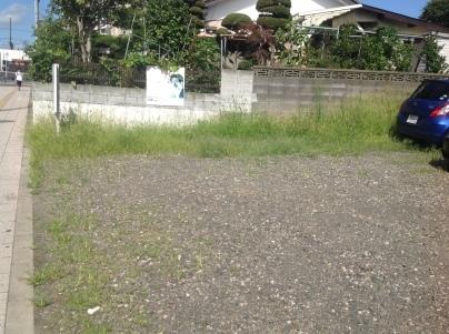 駐車場除草作業_c0186441_17482960.jpeg