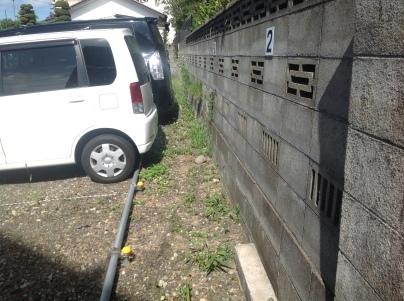 駐車場除草作業_c0186441_17540739.jpeg
