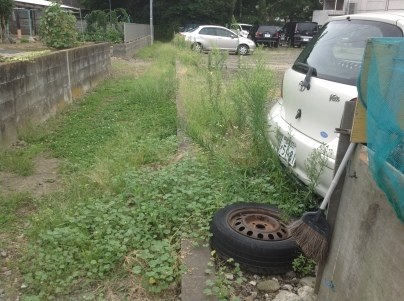駐車場除草作業_c0186441_18103146.jpeg